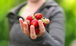 Suffering From High BP? Eat Strawberries!