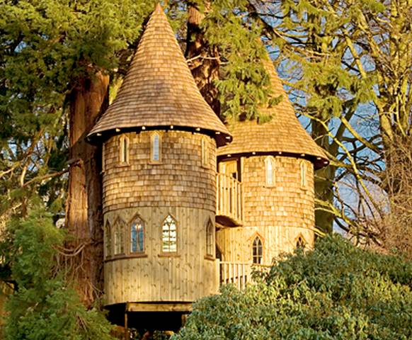 5 Best Tree Houses in The World