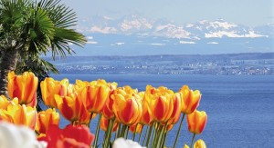 lake-constance-bodensee-98270