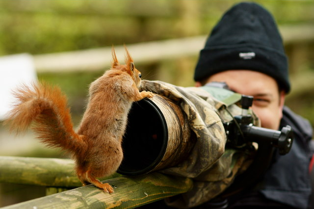 wildlife-photographer