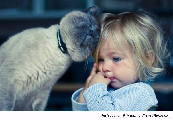 Cat-gives-kid-great-compassion-resizecrop--