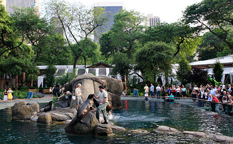 Central Park Zoo at the Fifth Avenue and 64th Street