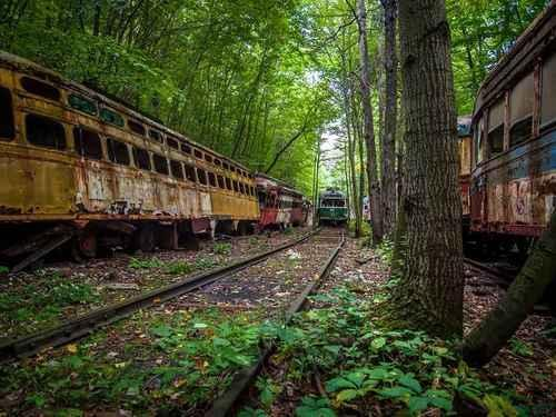Train Graveyard — North Carolina