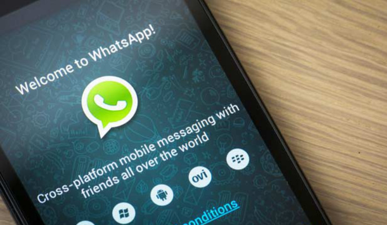 Tips & Tricks to Secure Your WhatsApp Account