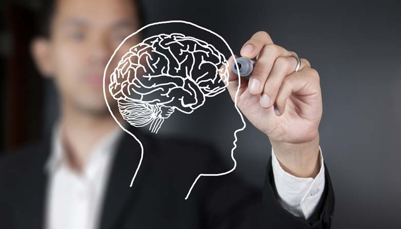 Best Brain Supplements For A Healthy Brain