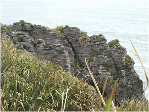 DO Experience New Zealand's Natural Wealth