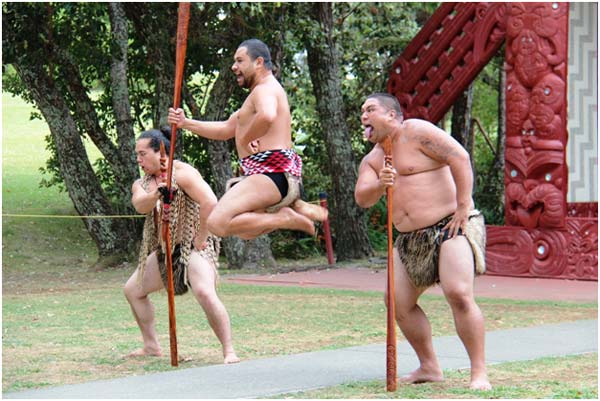 DO Try to Experience the Maori Culture
