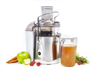 Fusion Juicer 100
