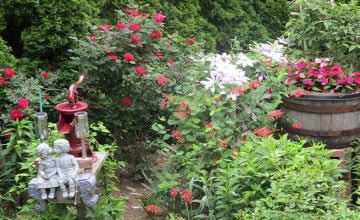 eco-friendly tips for the organic garden
