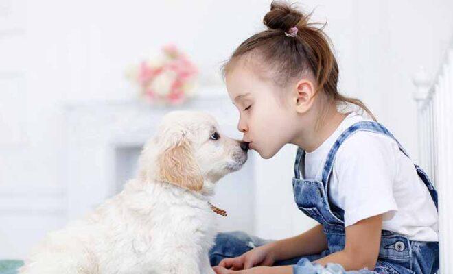 Best Dog Breeds for Your Kids